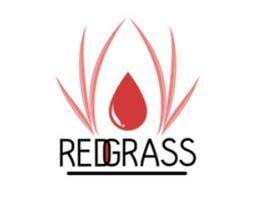 Redgrass Games