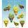 Salamandra Heads Icons