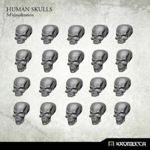 Human Skulls (20)