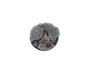 Ruins Bases, Round 60mm (1)