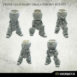 Dragonborn Prime Bodies (5)