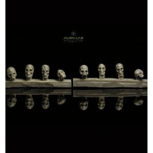 Big Skulls #1